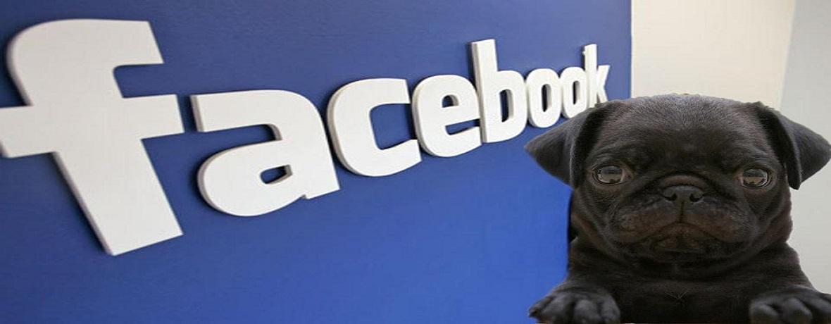 Přidejte se k nám na Facebook